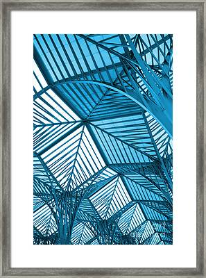 Architecture Design Framed Print by Carlos Caetano