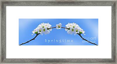 Archway To Springtime Framed Print by Kaye Menner