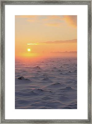 Arctic Framed Print by P.folk / Photography