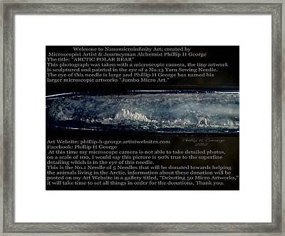 Arctic Polar Bear Debuting Photo Framed Print by Phillip H George