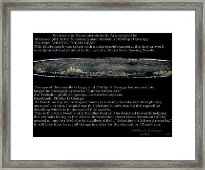 Arctic Polar Bear  Framed Print by Phillip H George