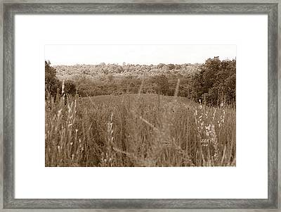Are We Willing Black And White Framed Print