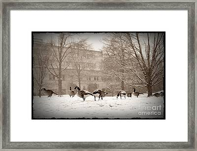 Are You Joining Us... Framed Print
