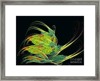 Argonaut Framed Print