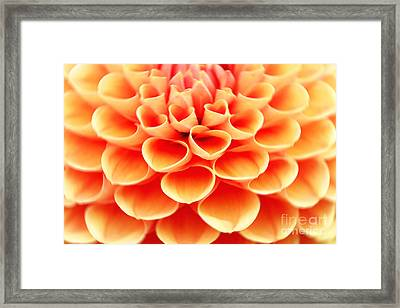 Arise Framed Print by Lj Lambert