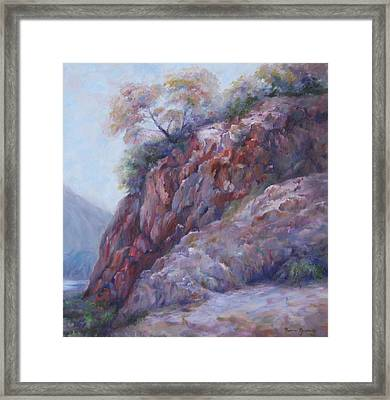 Arizona Cliff Framed Print