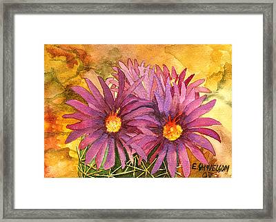 Arizona Pincushion  Framed Print
