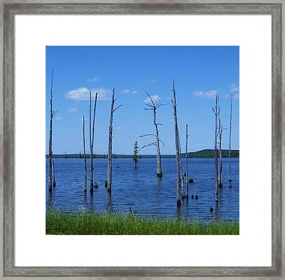 Arkansas Lake Framed Print by Todd Sherlock