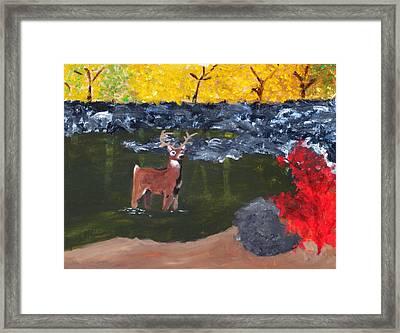 Arkansas Wildlife Framed Print by Ashley Anthony