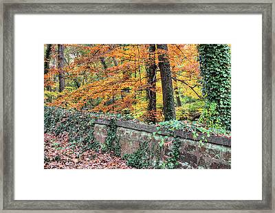 Arlington's Edge Framed Print by JC Findley