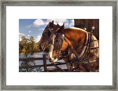 Around The Bend Framed Print by Joann Vitali