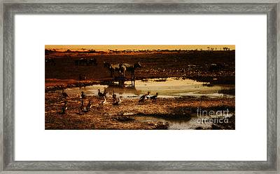 Framed Print featuring the photograph Around The Pond by Lydia Holly