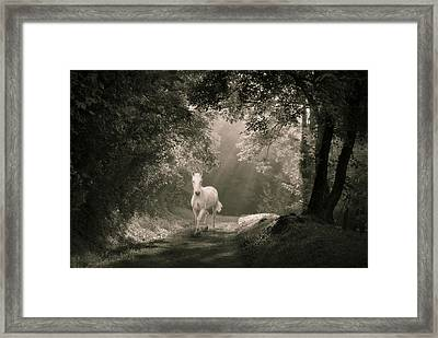 Arpegistor Returns Framed Print by Akos Kozari