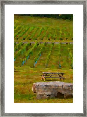 Arrington Vineyards Framed Print by Paul Bartoszek