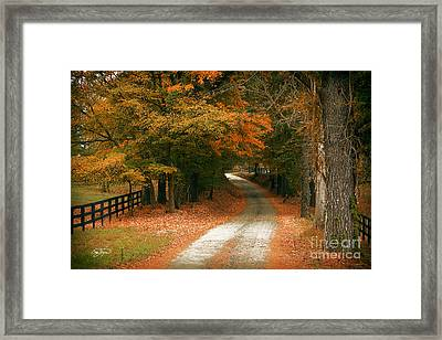 Arrival  Framed Print by Cris Hayes