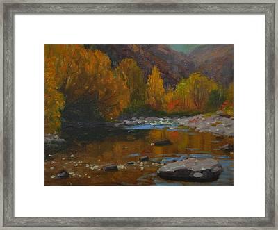 Arrow Gold 1982 Framed Print