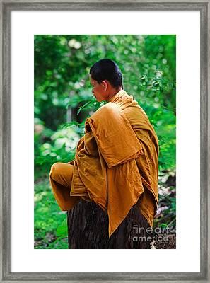 Art Of Meditation II Framed Print by Pete Reynolds