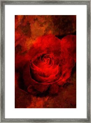 Art Rose Framed Print by Martin  Fry