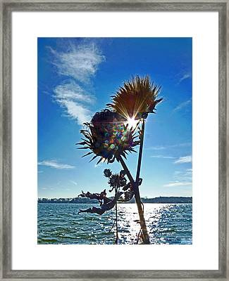 Framed Print featuring the photograph Artichoke Bones by William Fields