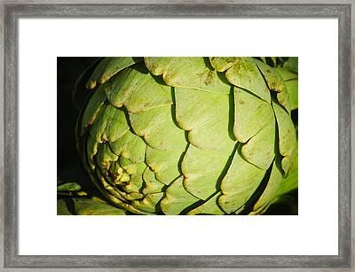 Artichoke Framed Print by Connie Cooper-Edwards