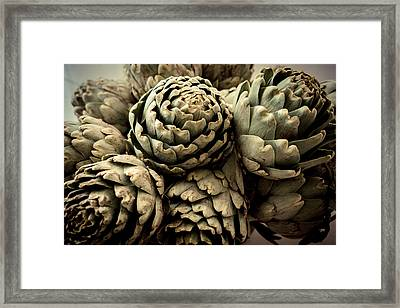 Artichokes Bouquet Framed Print by Eyes' Fun