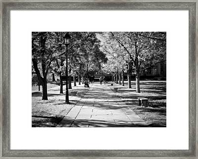 As Many Scholars Before Me... Framed Print by Jason Heckman