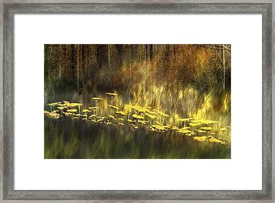 As Nature Intended Framed Print