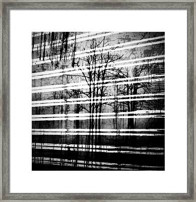As The Swamp Sleeps Framed Print by Jerry Cordeiro