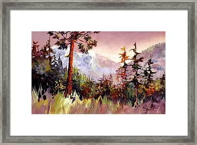 Ashnola Colours Framed Print