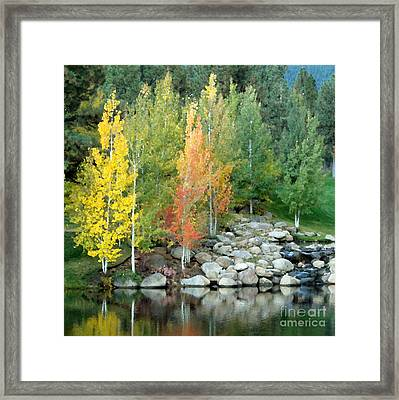 Aspen At Montreux Framed Print