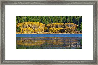 Aspen Gate Framed Print