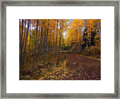 Aspen Lane Framed Print by Carol Cavalaris