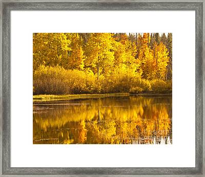 Aspen Pond Framed Print
