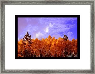 Aspen Ridge In Western Light Framed Print by Susanne Still
