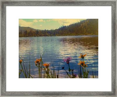 Framed Print featuring the photograph Aspen's Gift by Shawn Hughes