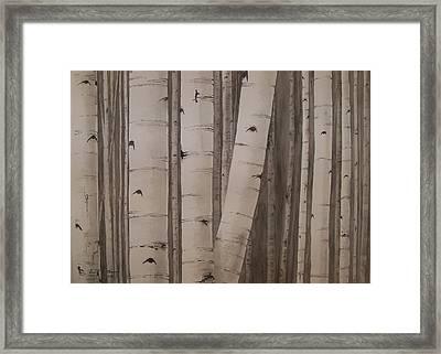 Aspens No. 2 Framed Print