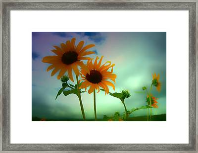 Asphalt Lemonade Framed Print