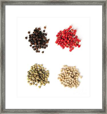 Assorted Peppercorns Framed Print by Elena Elisseeva