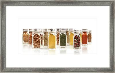 Assorted Spice Bottles Isolated On White Framed Print by Sandra Cunningham