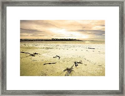 Framed Print featuring the photograph At Caroline Bay Timaru New Zealand by Nareeta Martin
