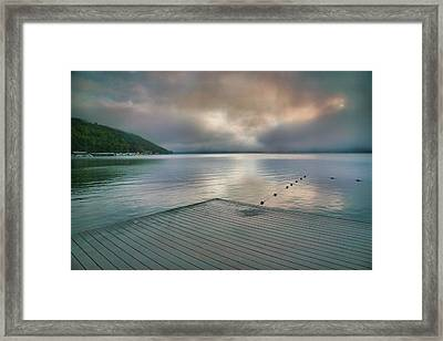 At Ease Framed Print by Steven Ainsworth