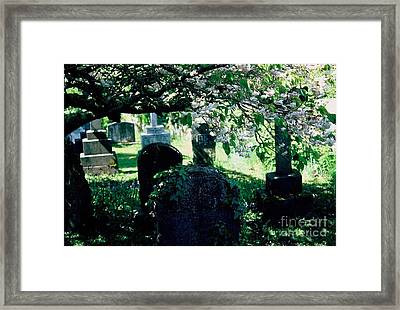 Framed Print featuring the photograph At Peace by Ranjini Kandasamy