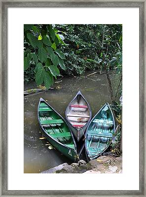 At Rest Framed Print by Li Newton
