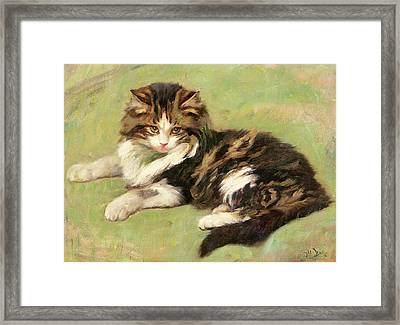 At Rest Framed Print by Wright Barker