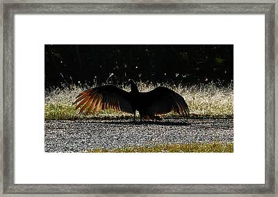 At The End Of Lifes Road Framed Print by David Lee Thompson