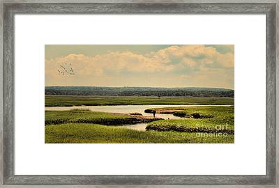 Framed Print featuring the photograph At The Marsh by Gina Cormier
