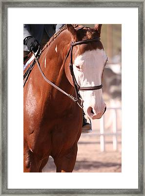 At The Show Framed Print by Wendi Matson
