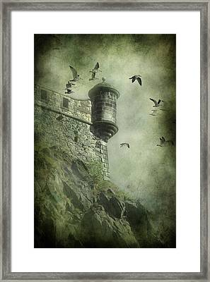 At The Top Framed Print by Svetlana Sewell