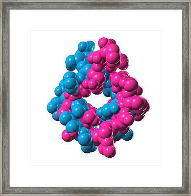 Atrial Natriuretic Peptide Molecule Framed Print by Laguna Design