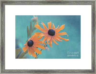 Attachement - S02czt01g Framed Print by Variance Collections